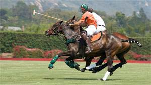Read More About Trilogy® at The Polo Club