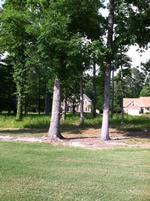Read more about Lot 4- Broad River Drive