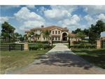 Read more about this Tampa, Florida real estate - PCR #13486 at Stonelake Ranch