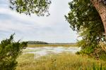Spectacular views of deep water marsh and Intracoastal Waterway.