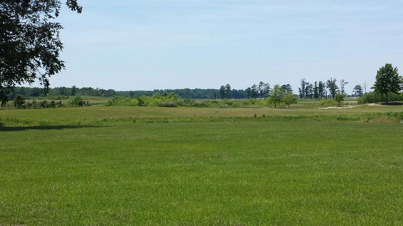 Return to the Scotch Hall Preserve Property Page