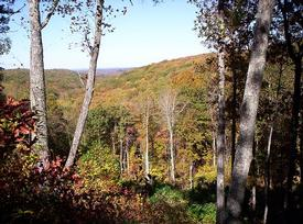Example of the breathtaking views at Cumberland Overlook in the FALL.