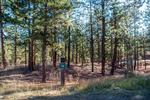 79 Hideout Trail; 0.53 acres; $215,000
