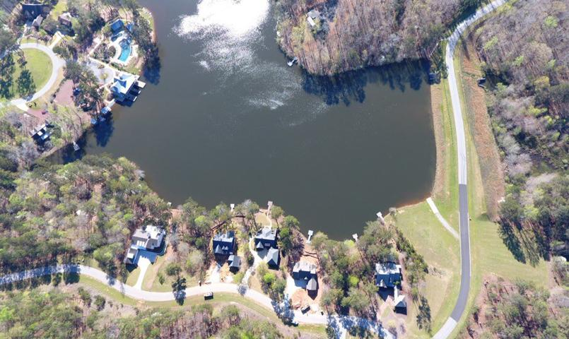 Aerial view of Blalock Lakes