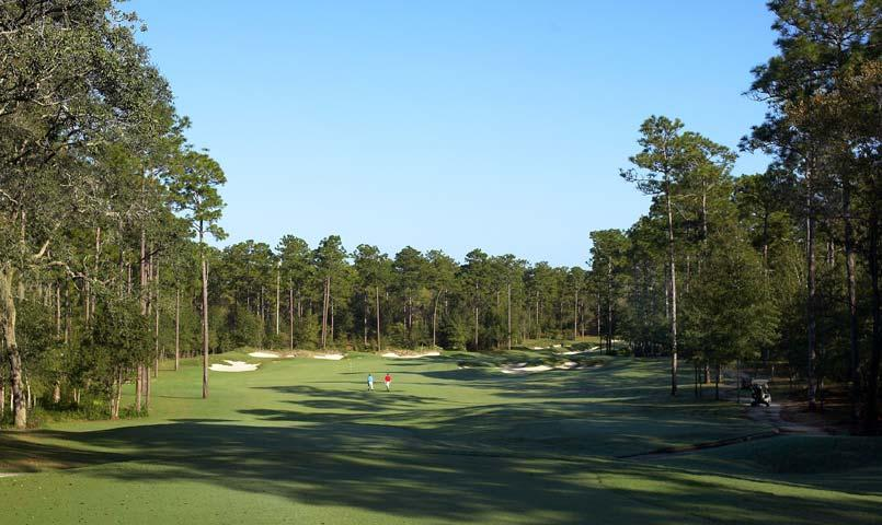 Residents have access to championship golf at the Victoria Hills Golf Club— designated a Certified Audubon Cooperative Sanctuary by Audubon International.