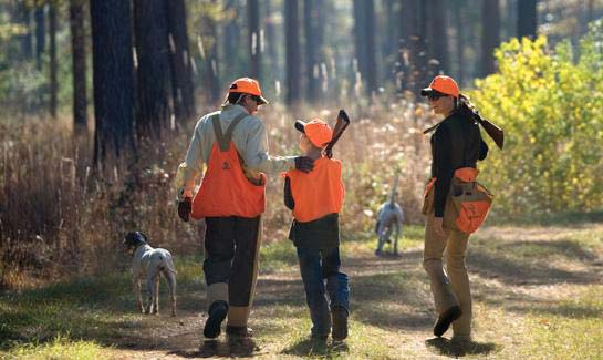 Brays Island is recognized as one of the premier locations for quail and partridge in the southeast.
