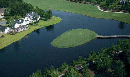 Custom homes overlooking the Greg Norman Signature Golf Course at Savannah Quarters