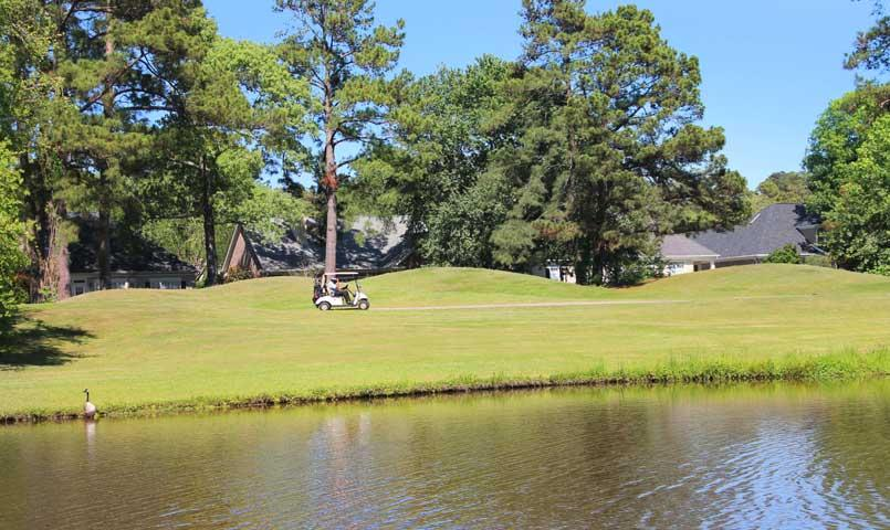 Nestled among 1,400 tranquil acres of woodlands, lakes, lagoons and walking trails, Southbridge is a thriving Savannah golf community.