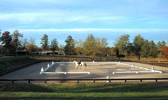 Competition level dressage arena at clubhouse complex