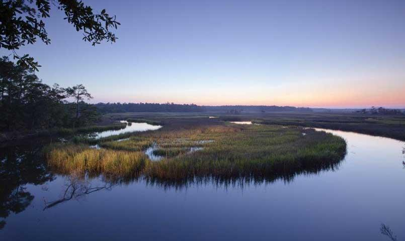 A serene view of the coastal marshes and waterway of Red Bird Creek.