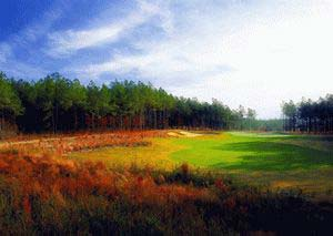 Discovery Packages available at Anderson Creek Club in Spring Lake, North Carolina