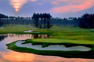 Return to the Amelia National Golf & Country Club Feature Page