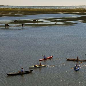 Read more about Newport, NC Private Community