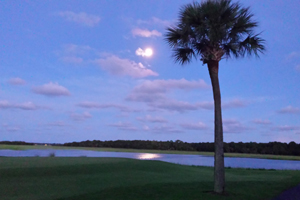 Return to the Kiawah River Estates Feature Page