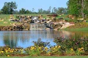 Return to the Sun City Peachtree by Del Webb Feature Page