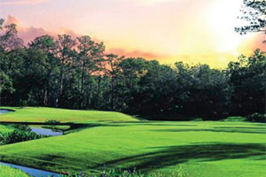 Return to the The Concession Golf Club & Residences Feature Page
