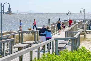 Return to the The Peninsula on the Indian River Bay Feature Page