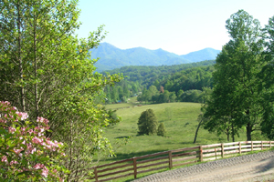 Read more about Bryson City, NC Private Community