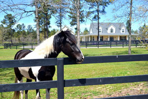 Read more about Aiken, SC Private Community