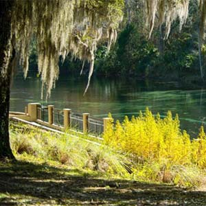 Read more about Ocala, FL Private Community
