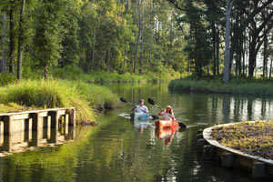 Return to the WaterWays Township Feature Page