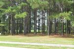 Read more about this Calabash, North Carolina real estate - PCR #14758 at Crow Creek