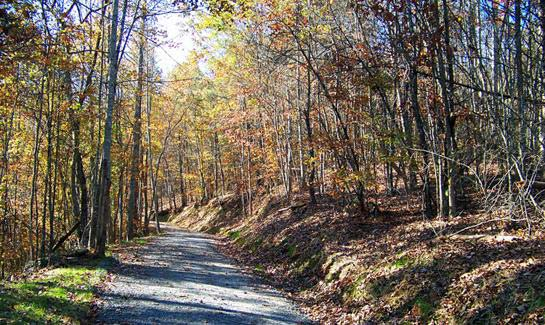 Grandview Peaks includes 3 miles of community nature trails and over 30 acres of green space.