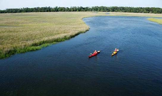 kayakers explore the marshes of Red Bird Creek.