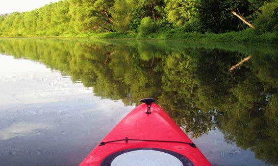 Kayaking on the Little River Blueway at Savannah Lakes Village