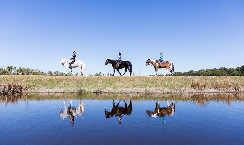 Brays Island Plantation Gated Golf Amp Equestrian