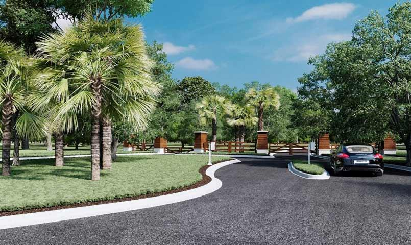 Palms At Serenoa In Clermont Florida Luxury Homes In A