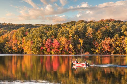 Best Places to Retire if You Love Fall Foliage